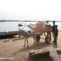 éléctrification solaire d'un école sur l'île de Saloum au Sénégal