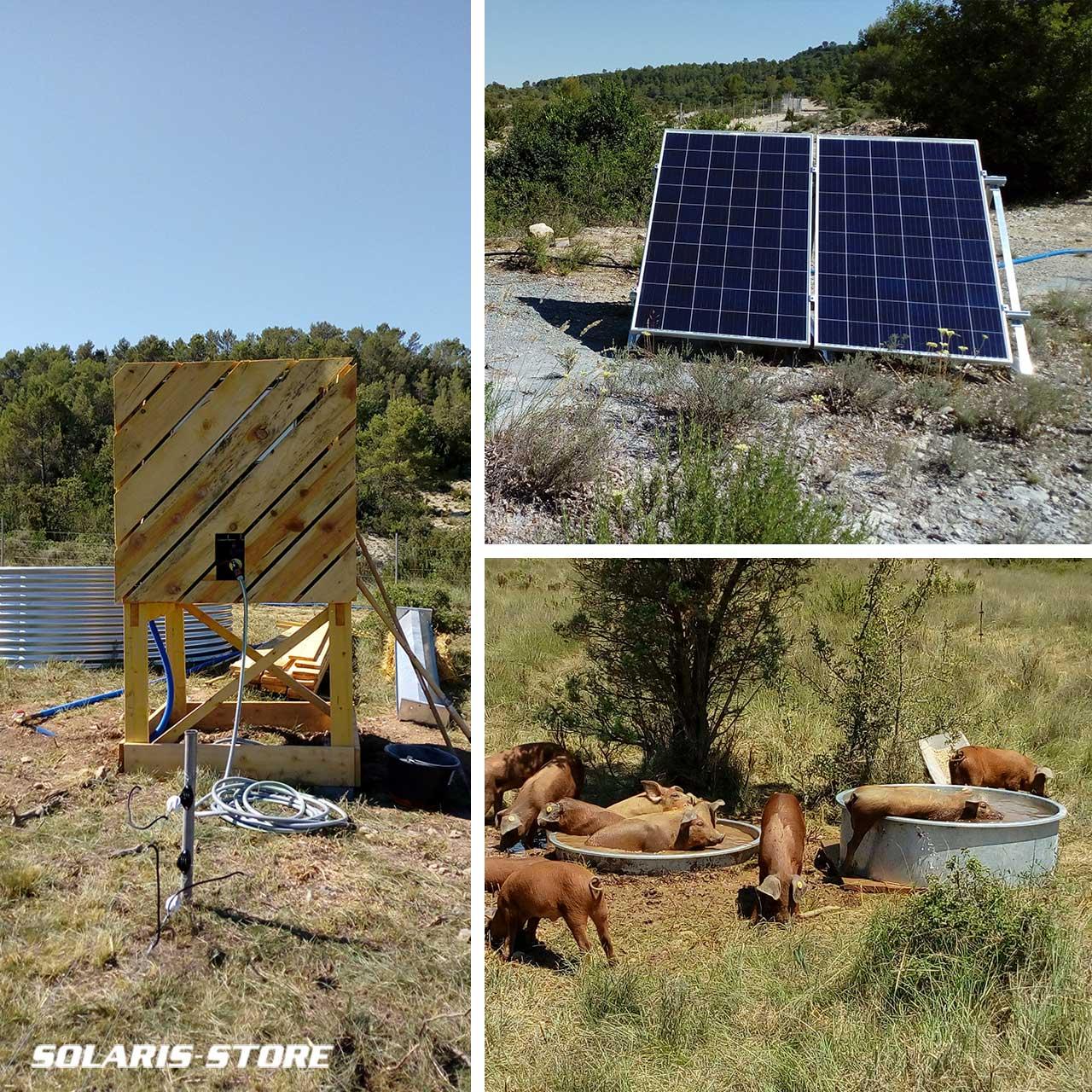 Abreuvoir solaire autonome pour une ferme d'élevage dans l'Hérault