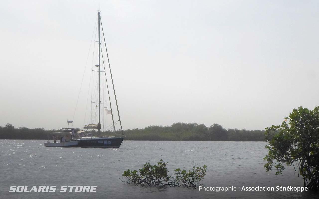 Accostage du voilier sur les îles du Saloum au Senegal.jpg